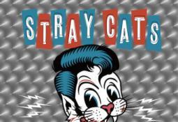 Stray Cats - 40 (CD)